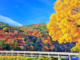 Togetsukyo, Kyoto, Japan