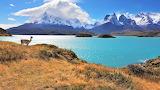 Parc National Torres del Paine (Chili)
