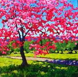 SpringCherryBlossoms