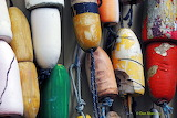 Lobster Pot Buoys scarred by props now just that.