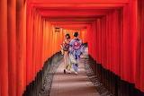 Women, kimono, tunnel, Kyoto, Fushimi, Inari, Japan