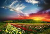 Coucher de soleil-prairie