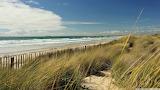 131215The-brown-grass-beach-wallpaper