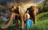 Girl, Asian, elephants, nature