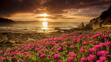 #Coastal Spring