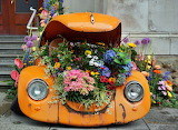 Beetle with Lots of Flower Power