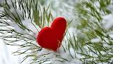 ^ Heart
