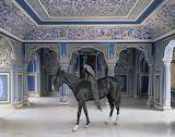 Karen Knorr, Jaipur City Palace, 2013