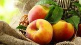 фрукты и ягоды 8