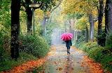 30-amazing-and-wonderful-umbrella-pictures-4