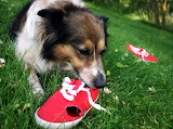 #Red Shoes Are Very Tasty