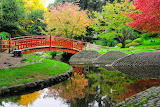 Japanese garden, Albert Kahn Museum, Paris, France