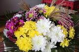 Beautiful cheerful flowers 698549