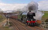Trains - Flying Scotsman 60103 - UK