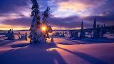 Winter Landscape VIII