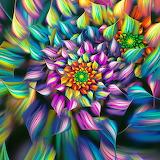 Colorful Design...