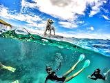 Half underwater