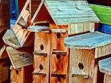 Unpainted Wooden Birdhouses