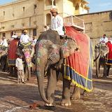 Inde Rajasthan Amber Fort