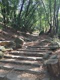 Nojoqui Falls Steps near Buellton, CA