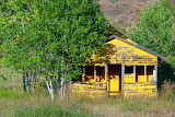 Yellow Shack