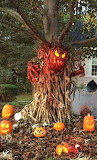 Spooky Halloween display with cornstalks and jack-o'-lanterns