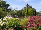 Greenfield Village Windmill and Gardens by Ed Davis