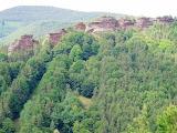 Pfälzerwald Pferchfeldwand