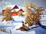 Pheasant Run~ JohnSloane