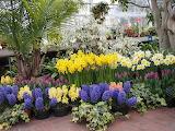 Viver - Gardens