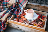 Cup, coffee, book, leaves, blanket, autumn