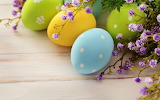 Easter-spring-holiday-eggs-branch-flowers-hd-wallpaper
