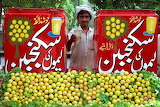 citrus fruit vendor