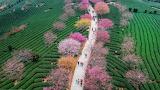 Yongfu Town, Guilin, China