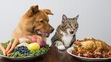 Food Envy.......................................x
