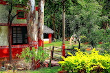 Cottage India