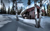 Small Cabin in The Winter Forest