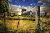 Rural-farms-debra-and-dave-vanderlaan