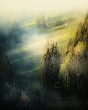 Foggy Misty Morning
