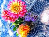 ^ Flowers on table