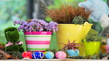 Easter, vases, flowers, eggs, decorations