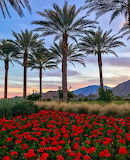 Indian Wells, CA