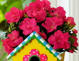☺♥ Pretty birdhouse...