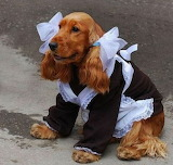 Poor Dog! They made her a maid :(