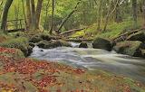 For 715ajan3 Fowey River Autumn