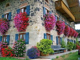 Fantastic-flower-boxes-on-the-balcony