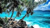 Seychelles island,lovely vacation