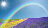 Rainbow fields