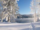 Canim Lake British Columbia - Photo from Piqsels id-zjvyc