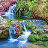 Flowing Green...